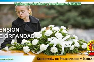PENSIONES POR CAUSA DE MUERTE 2